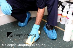 Carpet Cleaning Glen Iris 3146