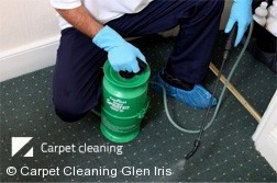 Carpet Cleaners Glen Iris 3146