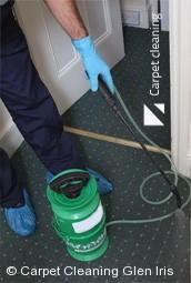 Glen Iris 3146 Deep Carpet Cleaning Services