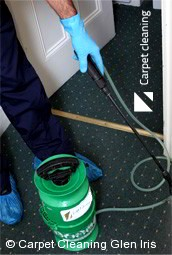 Professional Carpet Cleaners Glen Iris 3146