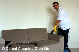 Glen Iris 3146 Sofa Cleaning