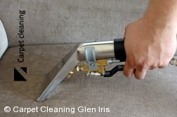 Professional Upholstery Cleaning in Glen Iris