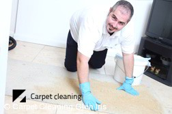 Glen Iris Dry Carpet Cleaning  Services